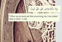 Quran / Quran Reminders
