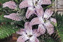 Crochet flowers, leaves etc
