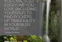 Quotations / Beautiful quotations over beautiful photos of the Portland Japanese Garden