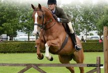 show jumping tips & tricks