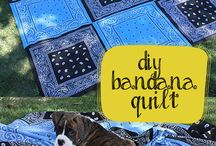 Quilts / Beautiful bed coverings / by gina thompson