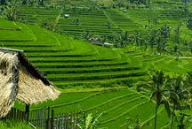 Places of interest in Bali