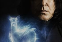 HARRY POTTER-SEVERUS SNAPE