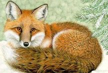 I love foxes..