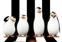 Penguin of Madagaskar