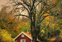 Autumn/jeseň