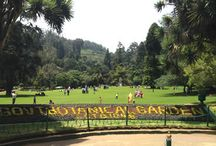 Places to see / Places to see in Ooty