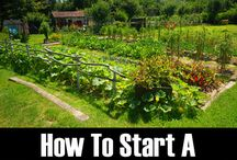 how to start a pemaculture garden