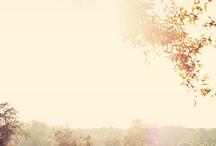 Someday... / by sunshine alabama