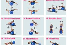 Exercise Ball Fun