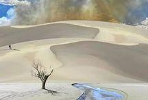 Desert/Woestyn