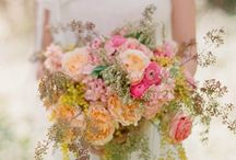 Pine rose styled shoot