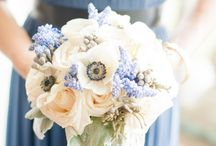 Cool, Springtime wedding theme / blues, pastels, succulents