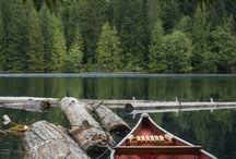 Canoe//Kayak Trip