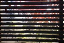 The Garden / Pergola med frostat glas
