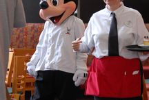 Disney Character Dining  / Are you looking for a Disney Princess breakfast or a chance to dine with Mickey Mouse?   This board gives the nformation you need about Disney Character Dining restaurants and experiences.