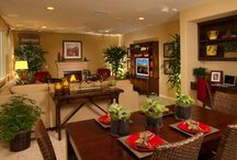 Living Room Ideas / by Charmaine Linley