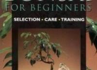 Bonsai books / Bonsai books recommended by Bonsai Empire; make your choice! :-) / by Bonsai Empire