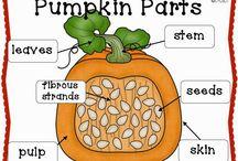 Pumpkin Lesson