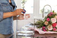 Blog Bourguignon / ¡Aprende más sobre tus flores y plantas favoritas! Inspiración, decoración, consejos de cuidados, curiosidades, novias, y mucho más en nuestro blog.