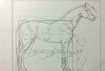 Horses - строение, скульптура