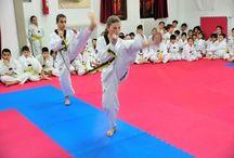 tae kwon do skiathos / yiotamads photography