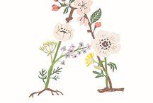 Letras flores