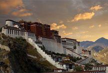 Tibet / by Hannah Murray