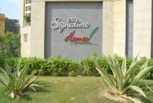 """Signature Homes / MCC Developers Private Limited, a group company has successfully handed-over """"MCC Signature Homes"""", a group housing project with 204 units, in Raj Nagar Extension, Ghaziabad.  Structure designed for the highest seismic consideration for Zone V, against Zone IV as stipulated by the code, for better safety."""