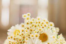floristry bouquets
