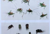 동양화 곤충