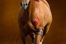 Horse dress up ideas