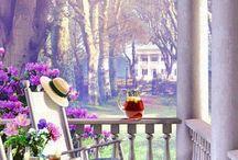 balcoane si terase cu flori