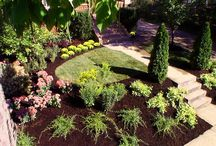 Front Yard Landscaping / Front yard landscaping ideas and tips.