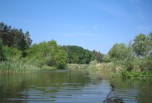 """Uecker / Die Uecker entsteht als Ucker im Oberuckersee bzw. Uckersee südlich von Prenzlau. Von der südlichsten Spitze des Oberuckersees aus kann man sie bis Prenzlau 19,5 Kilometer paddeln. Danach sind es bis Ueckermünde am Stettiner Haff bzw. """"Kleines Haff"""", wie der westliche Teil des Stettiner Haffs genannt wird, weitere 64 Kilometer. Die Uecker ist ein Kleinfluss, der erst auf seinen letzten Kilometern vor seiner Einmündung in das Stettiner Haff breit und schiffbar wird."""
