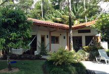 Playa Ballena Island View Home / http://www.coldwellbankercostarica.com/Uvita/playa-ballena-island-view-home.html