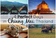 Chiang Mai / Things to see and do