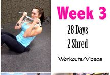 28 days to shred