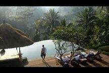 Villa Bayad Ubud Bali Video / Villa Bayad Ubud Bali picture collection in movie format