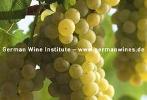 Weiße Rebsorten / white grape varieties