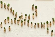 Recycled garden / by Inés Hurtado