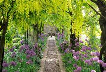 Gardens / Enviable gardens