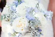 Sarah H - May 2015 / Wedding flower ideas - ivory and pale blue