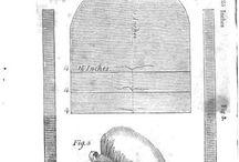 Historické čepice