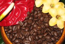 Opening Coffee Shop Business with Java Times Caffe / You must have enough money to cover your expenses for the first 2-4 months after opening.  http://javatimescaffe.com/
