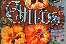 garden...  vintage illustrations