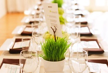 Spring Wedding / by DC Centre Banquet Facility