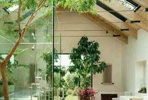 My Dream Home Designs