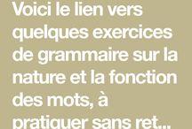 Grammaire nature et fonction des mots