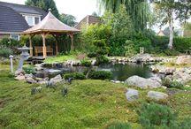 Oosterse/Japanse tuin / Hier vind je de mooiste foto's van de oosterse tuin.